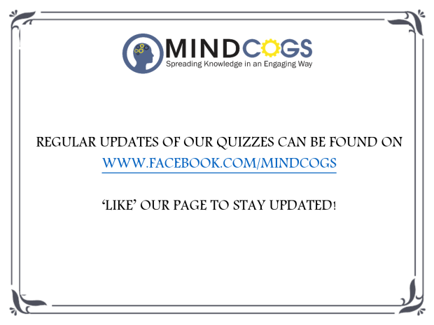 mindcogs update